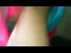 काले सेक्सी मूवी वीडियो हिंदी में गधे में सफेद मुर्गा (कैमस्टर)